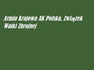 Armia Krajowa AK Polska, Związek Walki Zbrojnej | AtamanShop.pl
