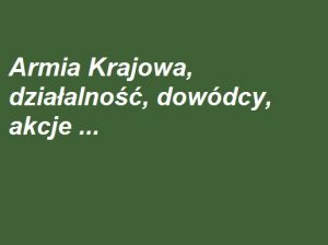 Armia Krajowa, jej działalność, dowódcy, akcje | AtamanShop.pl