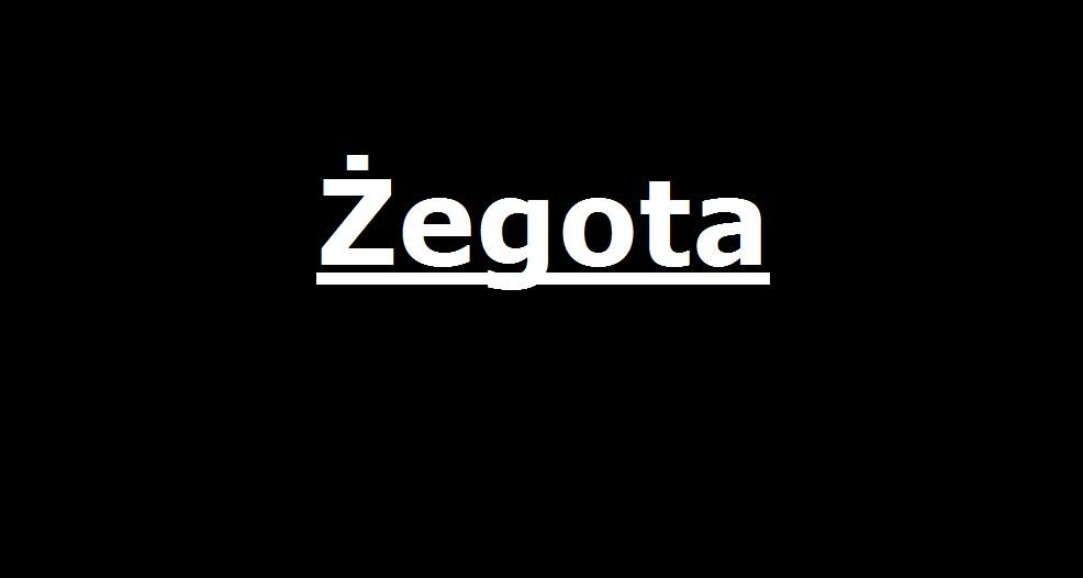 Żegota . . . | AtamanShop.pl
