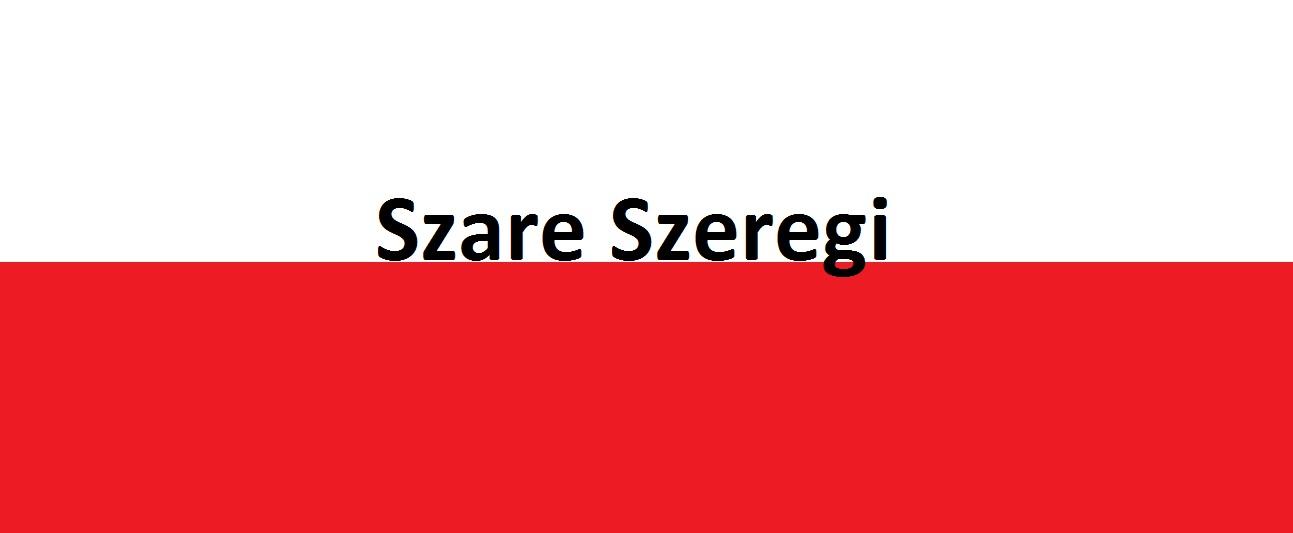 Co tobyły Szare Szeregi?   | AtamanShop.pl
