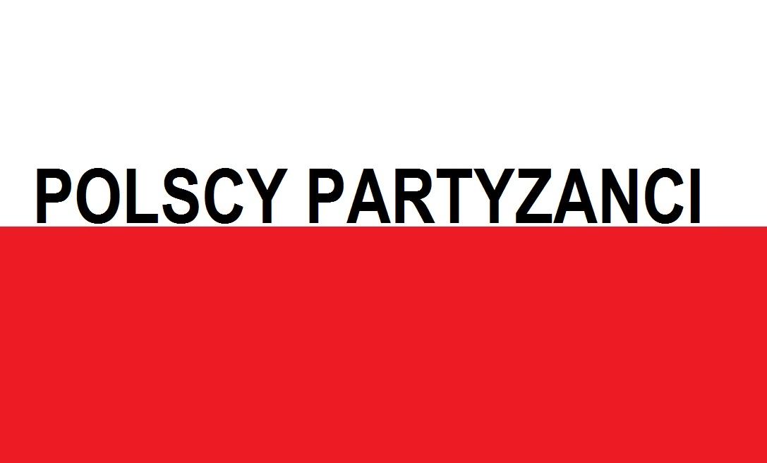 Polscy Partyzanci . . .    Blog Patriotyczny