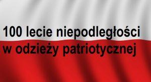 100 lecie niepodległości wodzieży patriotycznej | Blog Patriotyczny